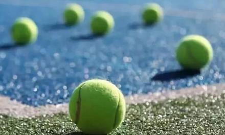 网球场上装逼神器——花式捡球!
