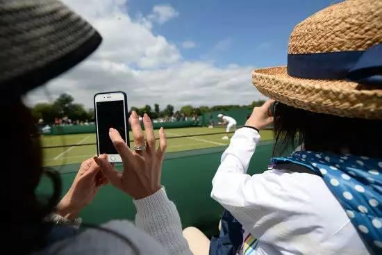 【温网直播】手机党球迷必备!