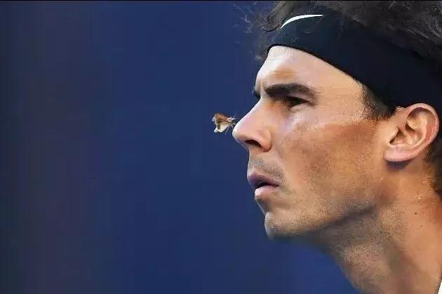 总结网球正手4大步骤,你知道为什么要半转体吗?